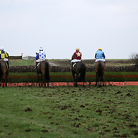 Jockeys show the first fence to their horses at the annual point to point meeting at Belhabour on Sunday.<br />