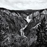 Teton/Yellowstone '13<br /> B&amp;W conversion 9/27/13