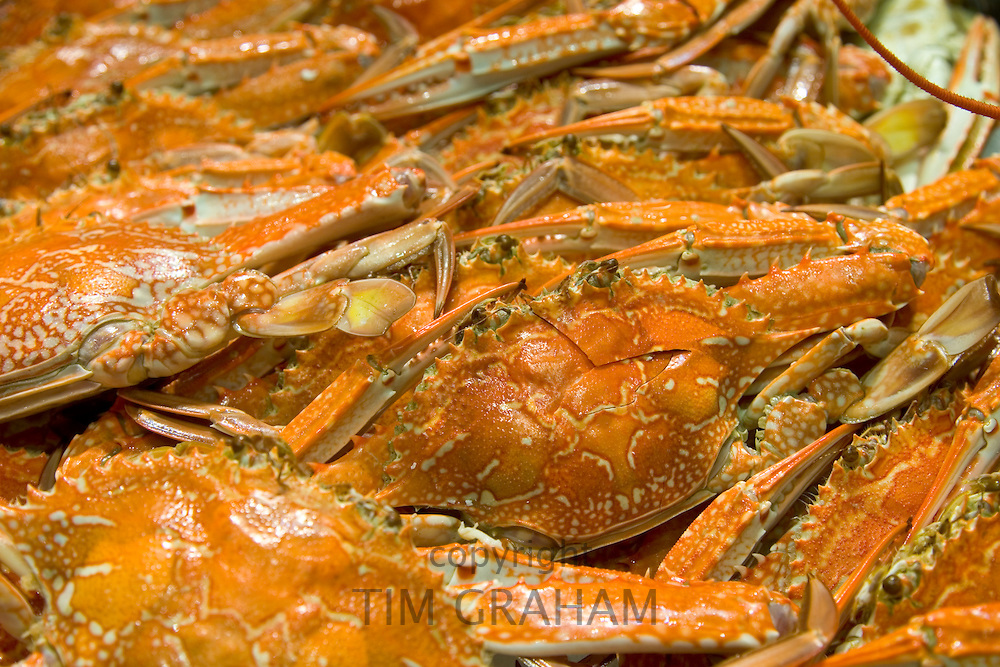 Fresh cooked blue swimmer crabs for sale at Sydney Fish Market, Darling Harbour, Australia