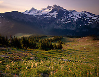 Spilllimacheen Glacier from meadow basin of Silent Mountain, Purcell Mountains British Columbia Canada