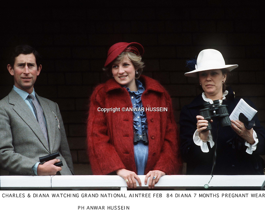 CHARLES &amp; DIANA WATCHING GRAND NATIONAL RACE AINTREE 1984. DIANA 7 MONTHS PREGNANT WEARING MAROON COAT &amp; SAUCER HAT<br />