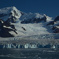 Nordensköld Glacier, Cumberland East Bay<br />