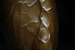 October 5, 2018 - Kathmandu, Nepal - Veins on a leg of a Nepalese bodybuilder is pictured during the qualifying round of the Dharmashree nationwide bodybuilding championships where hundreds of body builders from across the county took part in the championships in Kathmandu, Nepal, on Friday, 05 October 2018. (Credit Image: © Skanda Gautam/ZUMA Wire)