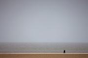 Walkers stroll along the shoreline in wintertime at Holkham beach, North Norfolk, UK