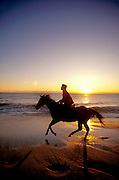 Horseback riding on beach at sunset