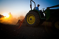 Farming in Oregon on an old John Deere tractor at sunrise.