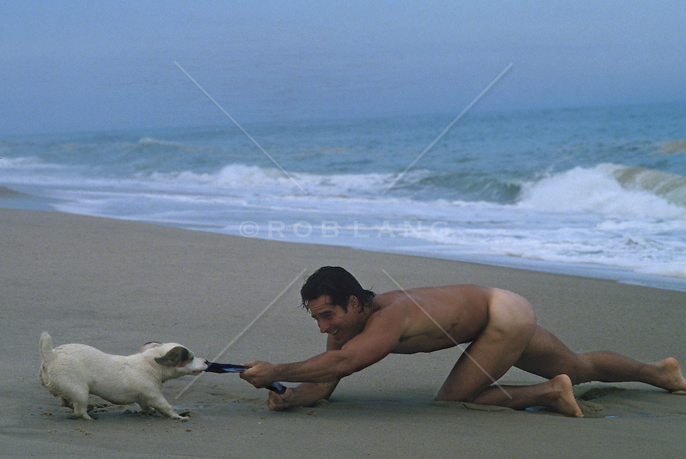 Jack russell trying to steal his owner's speedo on the beach in Malibu, CA
