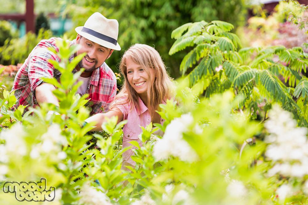 Portrait of mature gardeners examining plants in the garden