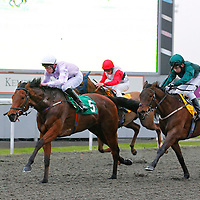 Kempton 26th March