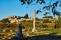 Turquie, province d'Izmir, ville de Selcuk, site archéologique d'Ephese, temple d'Artémis // Turkey, Izmir province, Selcuk city, archaeological site of Ephesus, temple of Artemis