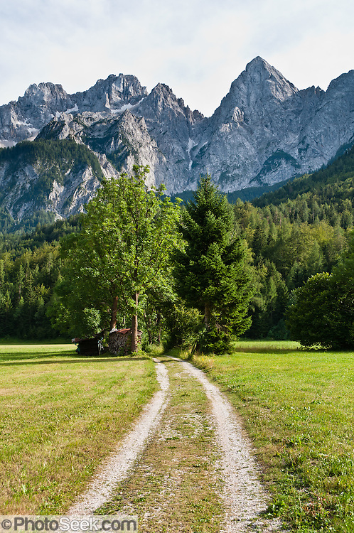 "A farm road leads to pyramidal mountain peak of Spik (""Spike,"" 2472 meters/8110 feet), which rises high above the town of Gozd Martuljek (""Martuljek Forest,"" formerly known as Rute) in the Julian Alps, in Kranjska Gora municipality in the Upper Carniola region, Slovenia, Europe. To the left (southeast) of Spik rises a higher summit, Oltar (2621 m), also within Triglav National Park (in Slovene: Triglavski narodni park, TNP). Historically, four linguistic and cultural groups of Europe have met in Slovenia: Slavic, Germanic, Romance, and Uralic. In 1991, Slovenia declared full sovereignty from Yugoslavia. In the 2002 census, 83% considered themselves Slovenes. Today, Slovenia is a member of the European Union, the Eurozone, the Schengen area, NATO and OECD. Per capita, Slovenia is the richest Slavic nation-state."