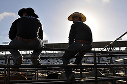 Riders wait out on the rail during the afternoon prep before Wednesday's 2013 PBR Touring Pro Division event at the Salinas Sports Complex.
