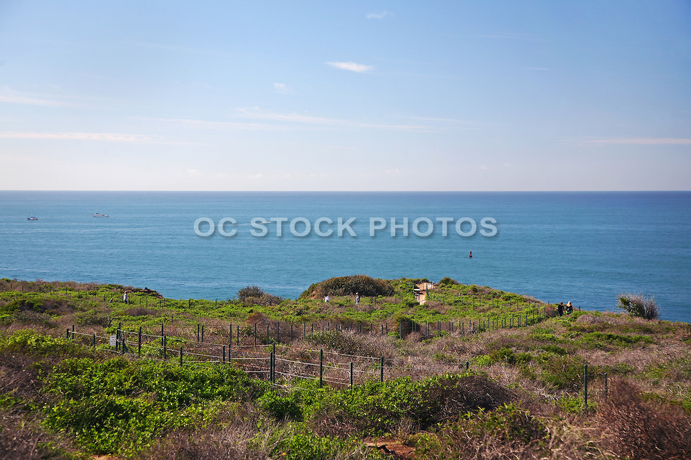 Dana Point Headlands Conservation Area