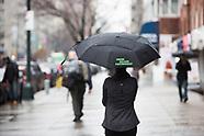 USP Umbrella