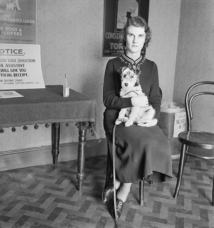 Dog Hospital, Croydon, London, 1935