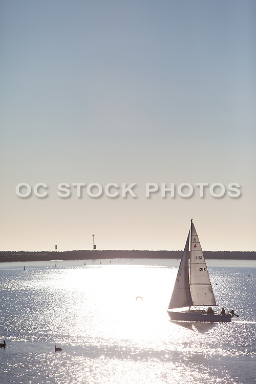 Sailing on the Pacific Ocean in Marina Del Rey Los Angeles