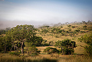 Mist rises at dawn, Hluhluwe-Imfolozi Game Reserve, KwaZulu-Natal province of South Africa.