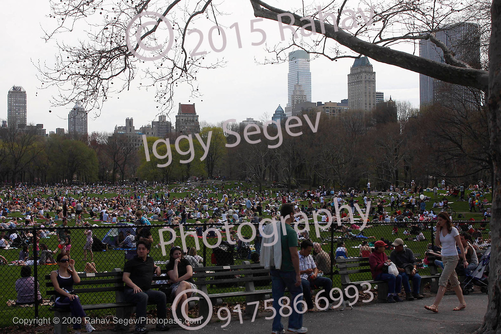 A very full Central Park at Sheep's Head Meadow with the Manhattan Skyline in the background..Shot on April 18, 2009...Photo Credit; Rahav Segev / Photopass
