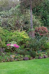 The main borders near the house at Greencombe Gardens, Somerset