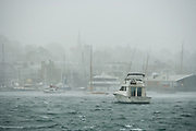 Newport, RI - Driving rain and 50 knot gusts lash Newport harbor and the few remaining boats still moored during superstorm Sandy.