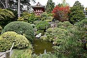 The Japanese Tea Garden. The Tea Garden is located inside Golden Gate Park in San Francisco, California. (Photo by Brian Garfinkel)
