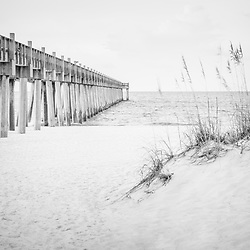 Pensacola Beach Gulf Pier and  beach grass black and white photo. Pensacola Beach is a coastal city along the Emerald Coast in the Southeastern United States. Photo is high resolution. Copyright ⓒ 2018 Paul Velgos with All Rights Reserved.