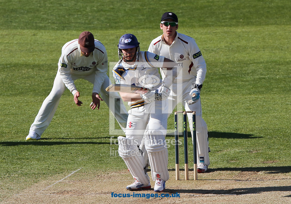 Kane Williamson (front) of Yorkshire County Cricket Club bats during day 4 of the LV County Championship Div One match at the County Ground, Taunton, Taunton<br /> Picture by Tom Smith/Focus Images Ltd 07545141164<br /> 16/04/2014