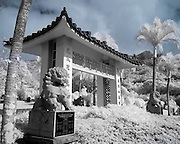 An infrared image of the entrance to the Manoa Chinese Cemetery on Oahu.