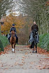 Roos Laurence - Derengo<br /> Heylen Tom - Don Renoir<br /> Stoeterij van de Helle - Putte Peulis 2007<br /> Photo © Hippo Foto