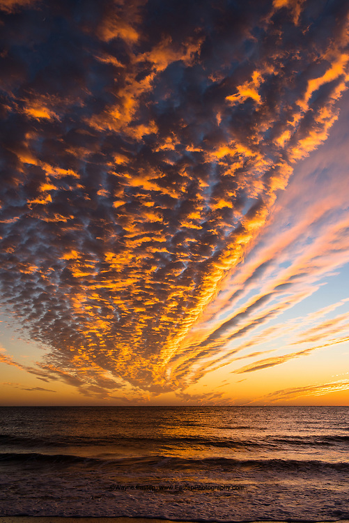 Unusual winter cloud formation  over Gulf of Mexico.