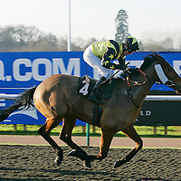 Emerald Wilderness and Eddie Ahern winning the 1.00 race