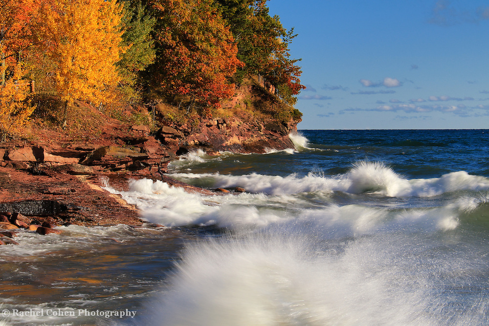 &quot;Wild and Free&quot;<br />
