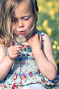 a 3 year old girl is blowing a dandelion clock