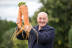 © Licensed to London News Pictures. 15/09/2017. Harrogate UK. Jo Atherton with his prize winning carrot at the Giant Vegetable competition at this years Harrogate Autumn Flower Show in Yorkshire. Photo Credit: Andrew McCaren/LNP