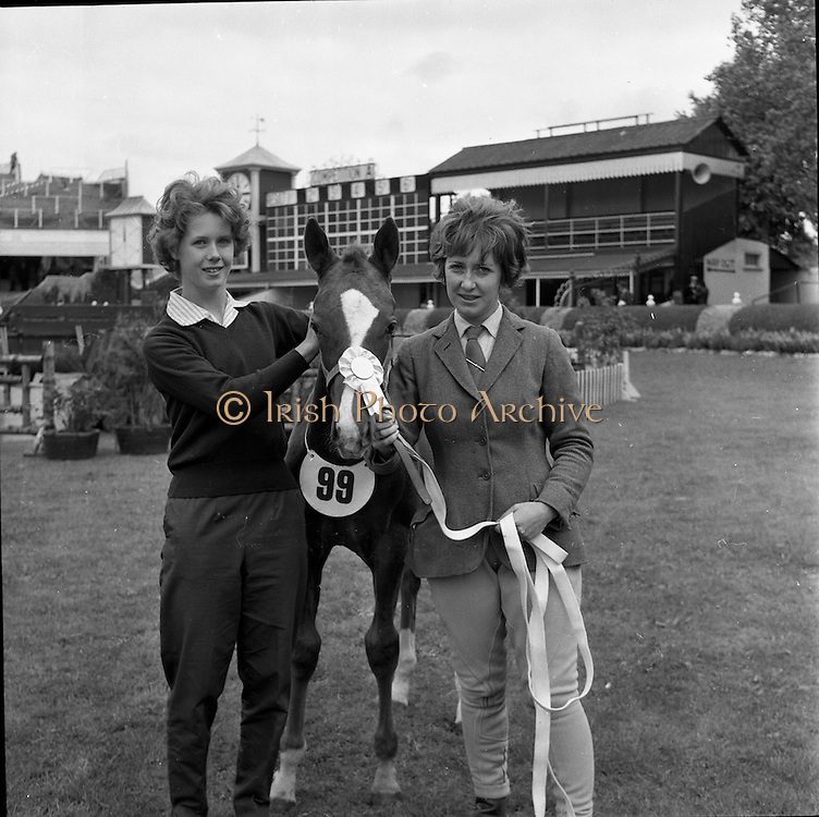 07/08/1962 <br /> 08/07/1962 <br /> 07 August 1962 <br /> Dublin Horse show at the RDS, Ballsbridge, Dublin, Tuesday. Image shows Virginia Metcalfe, Carrickfergus and Heather Moore, Jordanstown with Miss Moore's colt foal, which came 3rd in Class 5 in Thoroughbred Colt Foals.
