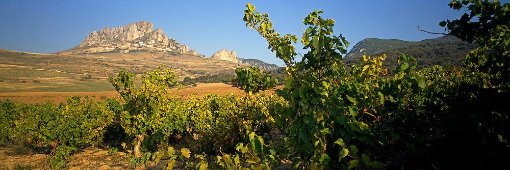 SPAIN, AGRICULTURE, LA RIOJA vineyards below the village of Cellorigo