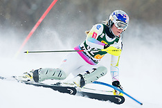 20130127 SLO: FIS Worldcup 49th Golden Vox, Maribor