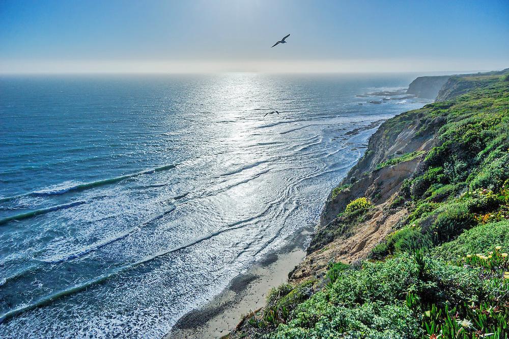 Pacific Coast outside Pescadero, California