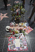 June 25, 2014 - Los Angeles, California, U.S - <br /> <br /> Michael Jackson Fifth Death Anniversary<br /> <br /> Fans of late pop star Michael Jackson pay tribute to his star on the Hollywood Walk of Fame near TCL Chinese Theatre to commemorate the 5th anniversary of his death on June 25, 2014 in Los Angeles, California. <br /> ©ZP/Exclusivepix