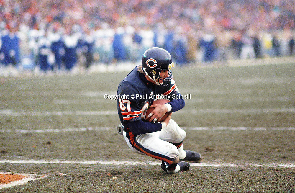 Chicago Bears wide receiver Tom Waddle (87) catches a touchdown pass during the NFL NFC Wild Card playoff football game against the Dallas Cowboys on Dec. 29, 1991 in Chicago. The Cowboys won the game 17-13. (©Paul Anthony Spinelli)