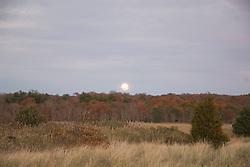 Sunset in the Northwest Woods of East Hampton, NY