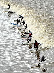 © Licensed to London News Pictures. 03/03/2014; Newnham, Gloucestershire, UK.  Surfers ride the Severn Bore. Today was a 5 star bore because of a high spring tide.<br /> Photo credit: Simon Chapman/LNP