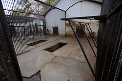 ROMANIA ONESTI 28OCT12 - The empty cage in which three Eurasian brown bears were kept in captivity for 8 years at the Onesti zoo.....The zoo has been shut down due to non-adherence with EU regulations on the welfare of animals...The bear was rescued from the decrepit Onesti Zoo where it lived for 8 years in degrading conditions.......jre/Photo by Jiri Rezac / WSPA......© Jiri Rezac 2012