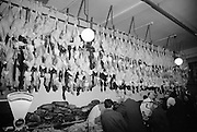 Trussed, plucked and hung, these turkeys in Findlaters shop, O'Connell Street, await the Christmas table. .16.12.1964