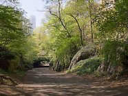 Central Park-Bridle Path