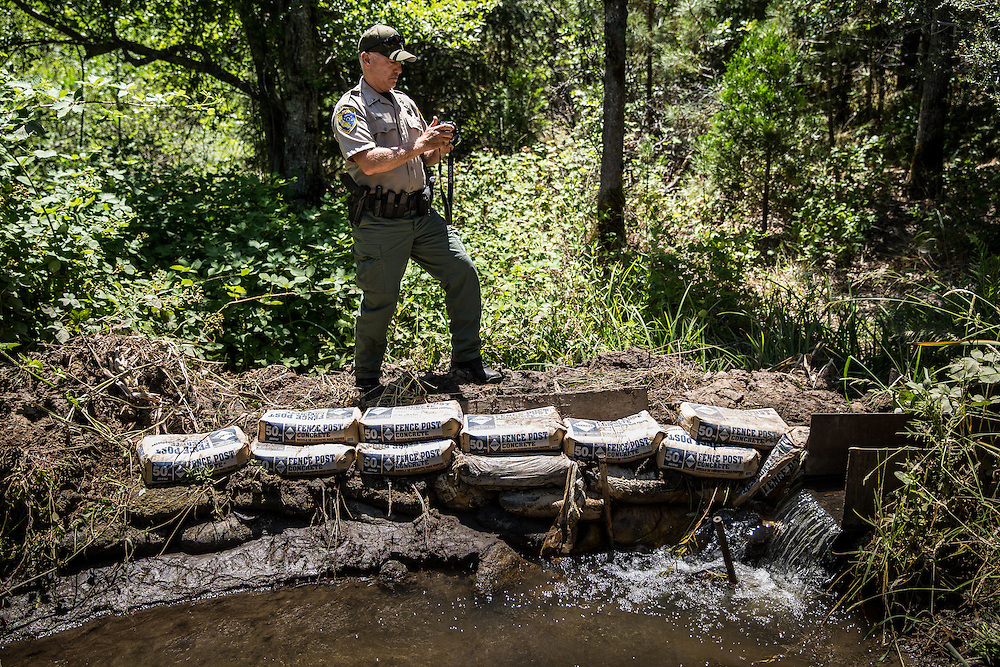 California Department of Fish and Wildlife Lieutenant DeWayne Little takes photos of an illegal water diversion and pollution from concrete for a marijuana garden near Oak Run, California, June 16, 2015.<br /> CREDIT: Max Whittaker/Prime for The Wall Street Journal<br /> POTWATER