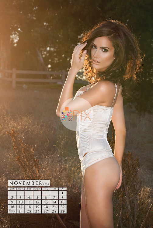 Donna Feldman | 2014 Calendar - limited edition offered exclusively by TF Publishing http://www.tfpublishing.com/products/2014-donna-feldman-wall-calendar<br />