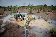 Boys from a refugeecamp collecting water in the outskirts of Kaga Bandoro - The central African rep. has some of the world's worst child welfare indicators. The infant mortality rate is 112, and out of 1,000 children born in CAR, 171 will die before reaching the age of five. The five main child killers in CAR are malaria, diarrhoea, acute respiratory infections, malnutrition and measles – all preventable diseases. The Accelerated Child Survival and Development Strategy UNICEF is implementing aims to reach every newborn and child in every district with a set of priority interventions. Evidence shows that there are a number of known and affordable interventions that if implemented fully could prevent 63 per cent of current childhood mortality.