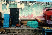 San Cristobal de las Casas,  Chiapas, in Mexico