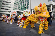 Foto: Gerrit de Heus. Den Haag. 13-02-2016. Landelijke viering Chinees Nieuwjaar. The Hague. February 13th 2016. Chinese New Year.